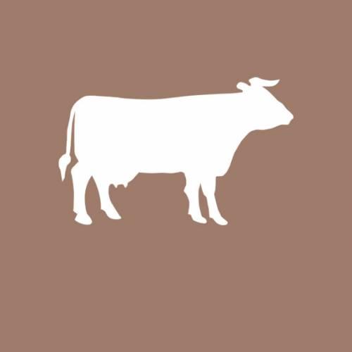 Fromages de vache